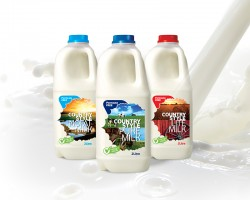 Country Style Milk